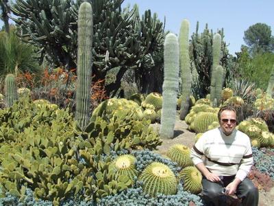 На Буковині такі не ростуть! – У Долині кактусів