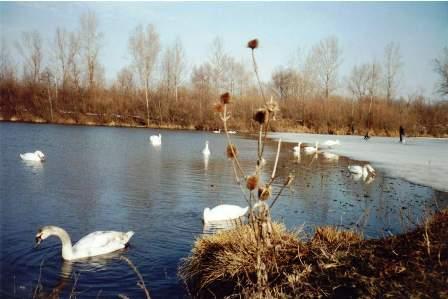 Фото Тетяни Спориніної . Чортория. 2003 р.