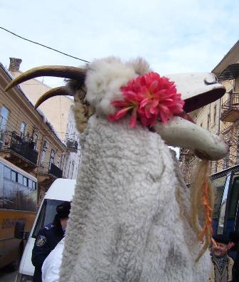 Господар іде, коляду несе, Коробку овса, зверху ковбаса, Ще й кусок сала, ще й коробку жита, Щоб коза сита, ще й п'ятак грошей, Щоб пан хороший.