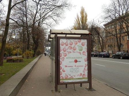 Дорогою на виставку. Київ, вулиця І. Мазепи. 2.11.2013.