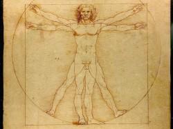 Leonardo-da-Vinci-Vitruvian-Man-1024x768