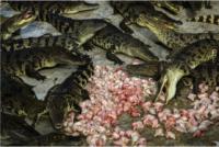 Як працює крокодилячий бізнес