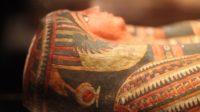 Швейцарські вчені віднайшли фараона-гіганта