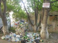 """Фотофакт: У Чернівцях """"Альтфатер"""" місяцями не вивозить контейнери з пластиковими пляшками"""