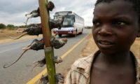 Малавійці вбивали людей, яких підозрювали у «вампіризмі»
