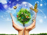 Довкілля Буковини захищатимуть за програмою «Екологія»
