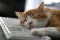7 причин поганого сну