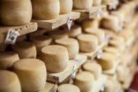 Сироварня з… лазні: у Чернівецькій області розвивають український бізнес