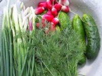 Ранні овочі небезпечні для здоров'я
