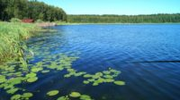 Після сильних злив в озерах не рекомендують купатися мінімум три дні