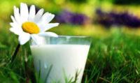 Козяче чи коров'яче: яке молоко корисніше