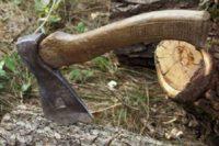 Чернівчани бачать, як рубають дерева, але нічого зробити не можуть?