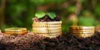 В Україні розпочав роботу онлайн-портал для перевірки грошової оцінки земель