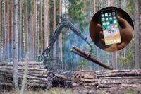 Кабмін ініціював «Ліс у смартфоні»