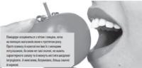Сезон у розпалі: скільки їсти помідорів, щоби не нашкодити