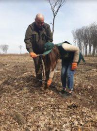 У весняній посадці лісу першим стартував Сокирянський лісгосп