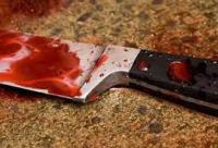 П'яна донька вбила ножем батька