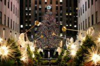 У Нью-Йорку встановили головну новорічну ялинку