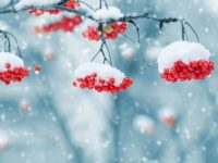 Погода в середу, 13 грудня, знову різко зміниться
