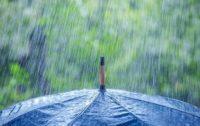 На Буковині завтра можливі дощі з грозами