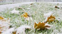 Морози в жовтні та снігопад у листопаді, – прогнози синоптиків