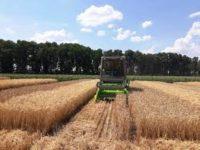 Кадастр і фактичні посіви в Україні дуже різняться