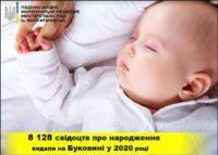 Понад 8 тисяч свідоцтв про народження видали торік на Буковині