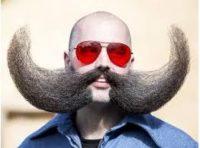 Вуса, як захисний бар'єр від раку шкіри…